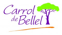 LOGO CARROL DE BELLEL 2.jpg