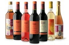 château,clos mignon,vin,vigne,fronton,sud,ouest,négrette,aoc,aop