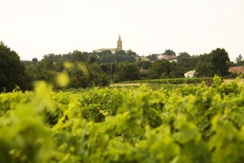 château plaisance,fronton,vacquiers